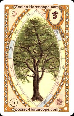 The tree astrological Lenormand Tarot