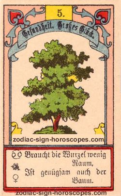 The tree, monthly Scorpio horoscope November